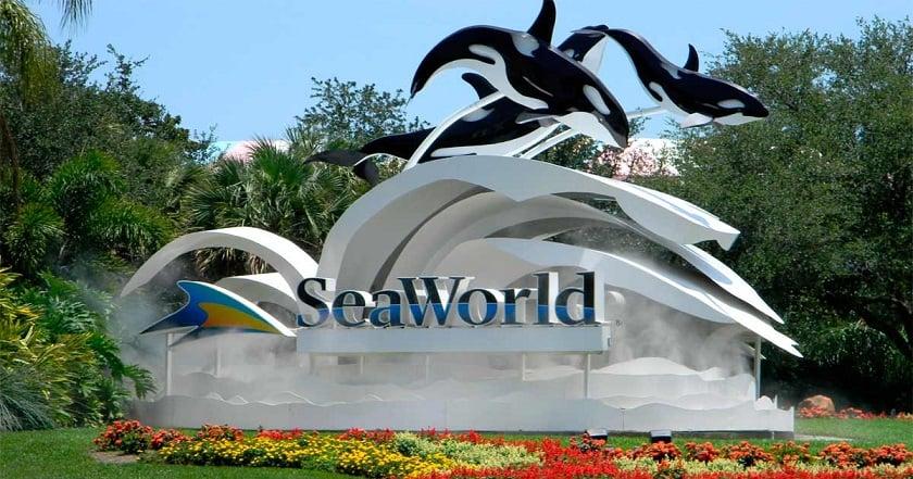 Atrações do Sea World em Orlando