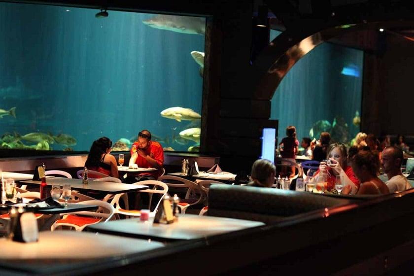 Onde comer no Sea World