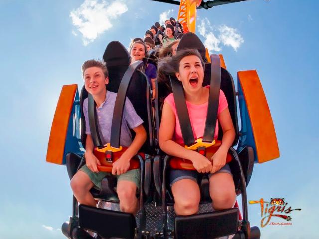 Tigris: nova montanha-russa do Busch Gardens em Orlando