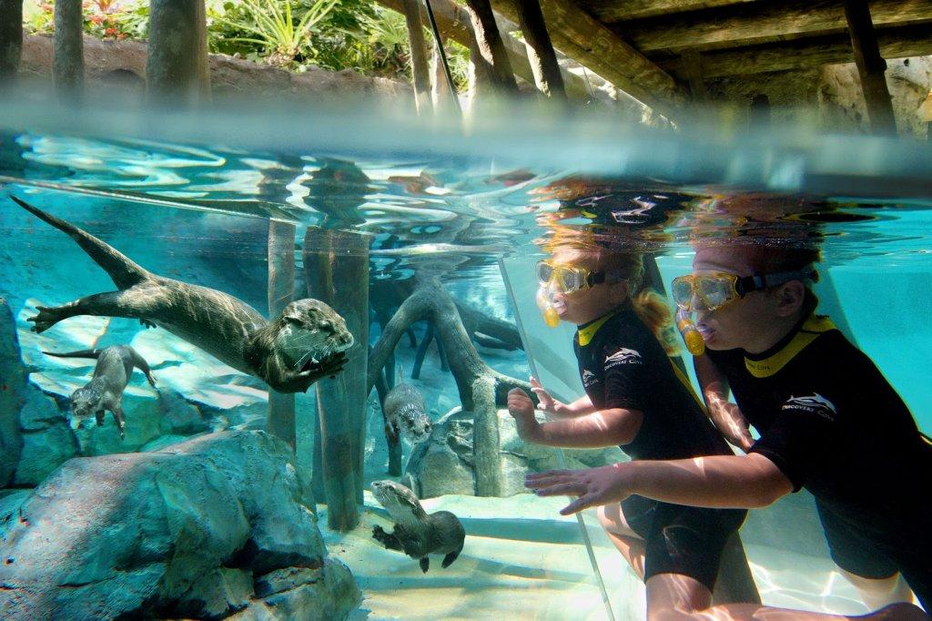 Crianças no parque Discovery Cove em Orlando
