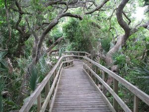 Lori Wilson Park em Cocoa Beach