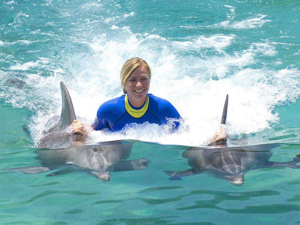 Nado com golfinhos no Seaquarium em Miami