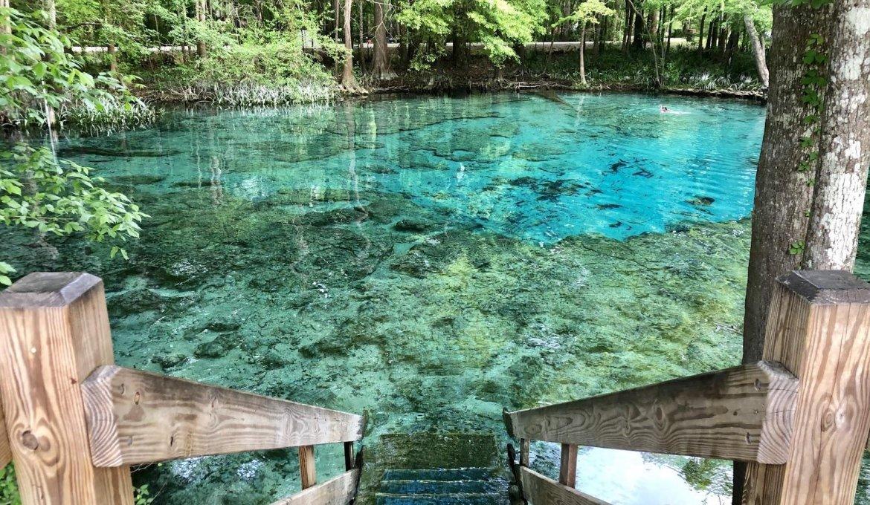 Ginnie Springs: passeio por piscinas naturais na Flórida